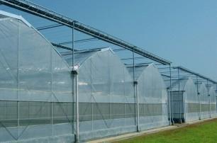 建设连栋温室需考虑