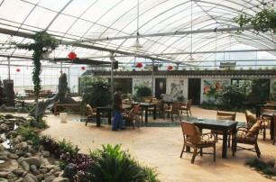 生态餐厅设计特点